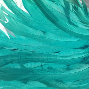Aqua Blue Rooster Feathers