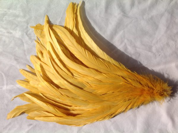 Golden Yellow Rooster Feathers