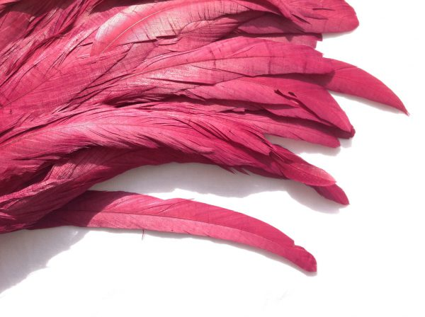 Wine Red Rooster Feathers