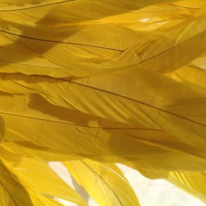 Lemon Yellow Rooster Feathers