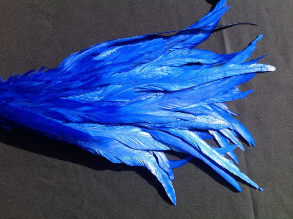 Electric Blue Rooster Feathers