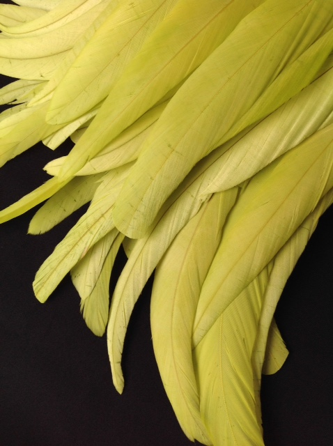 Chartreuse Green Rooster Feathers