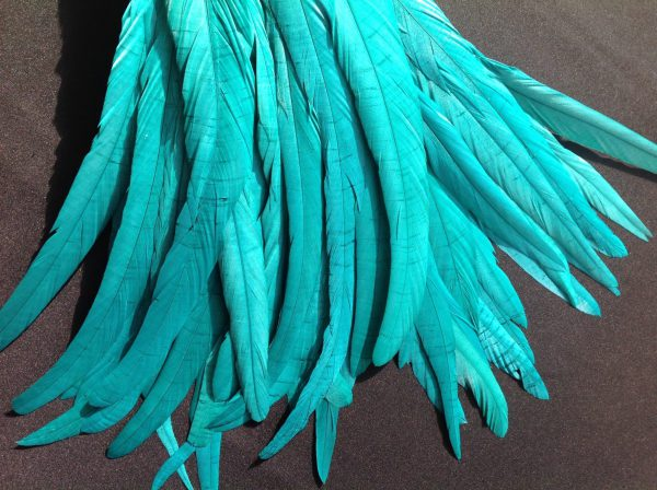 Teal Green Rooster Feathers