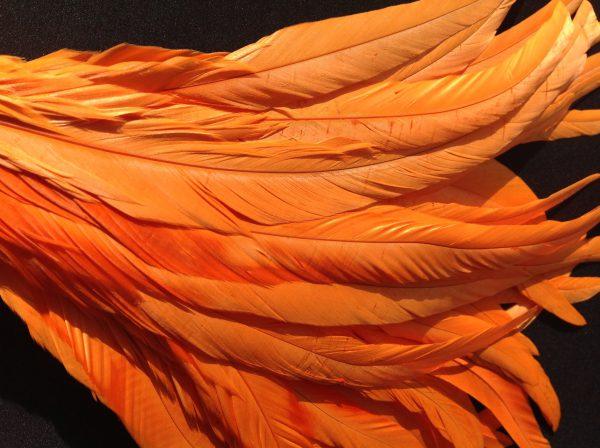 Bright Orange Rooster