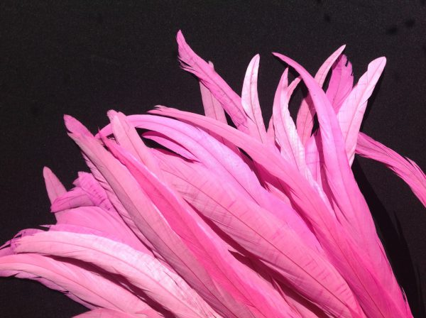 Bubblegum Pink Rooster Feathers