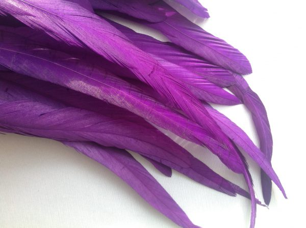 Cadbury Purple Rooster Feathers