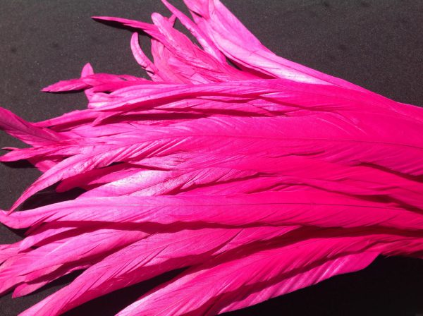 Fuchsia Pink Rooster Feathers