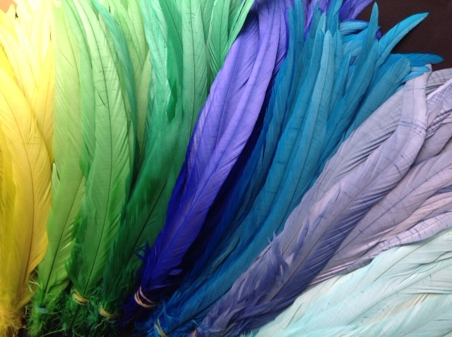 Dyed Rooster Feathers
